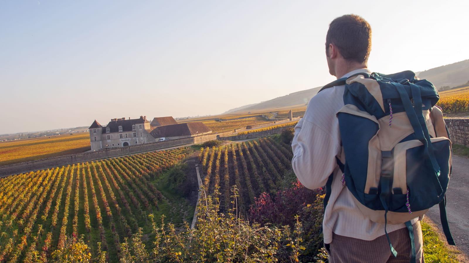 Randonnée dans le domaine du Château du Clos de Vougeot