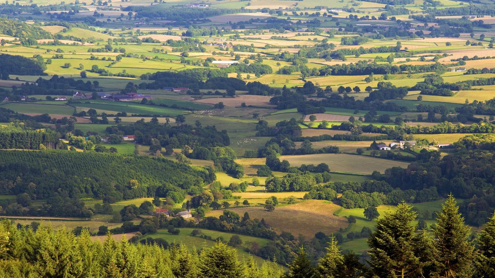 Vue depuis le mont Beuvray