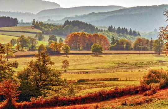 Le Parc naturel régional du Morvan | Bourgogne Tourisme