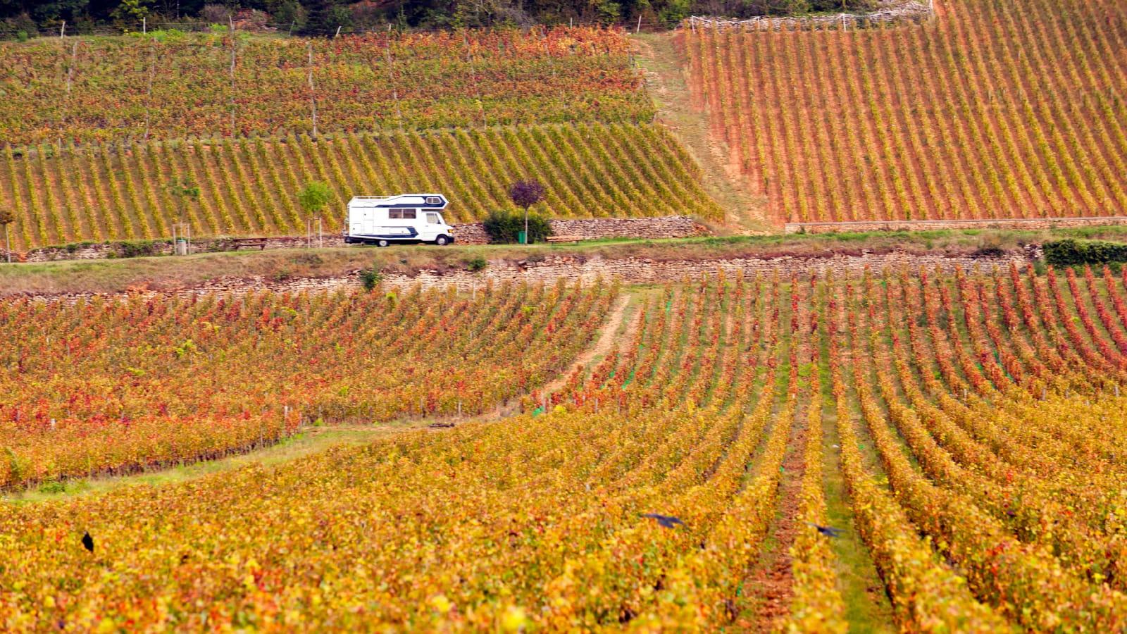 Camping-car dans le vignoble en automne