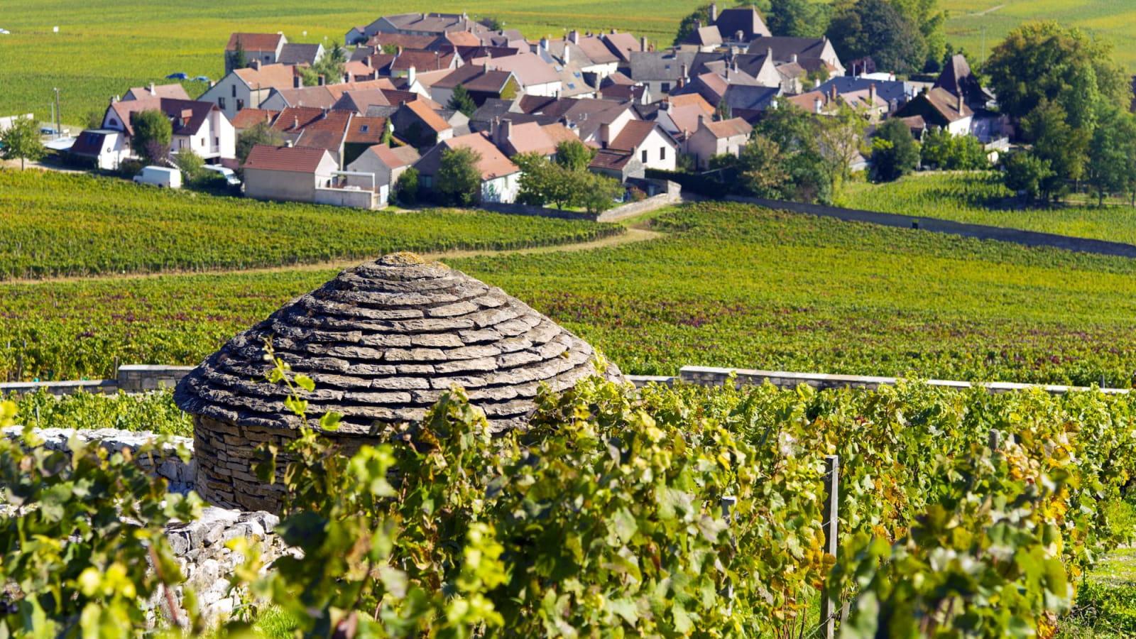 Village de Morey-Saint-Denis sur la Route des grands crus de Bourgogne