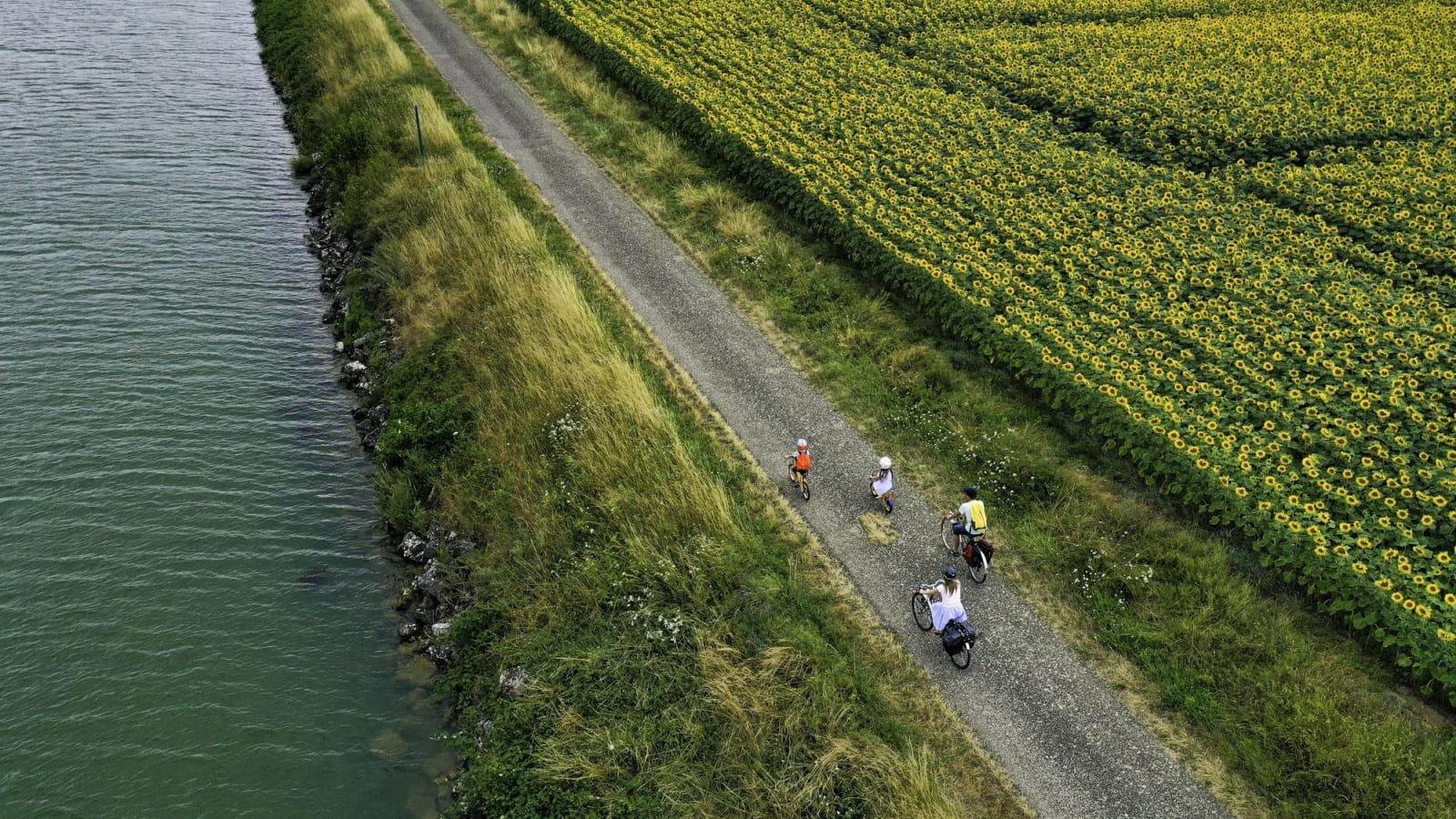 Le long de la voie Bleue en vélo