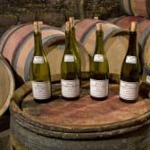 Les caves labellisées Vignobles et Découvertes