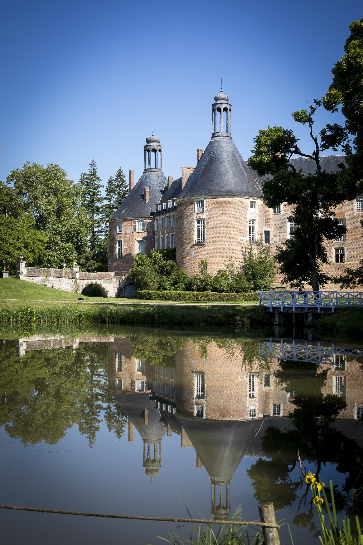 Chateau de St Fargeau