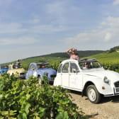 Découvrir la Bourgogne viticole en 2 CV