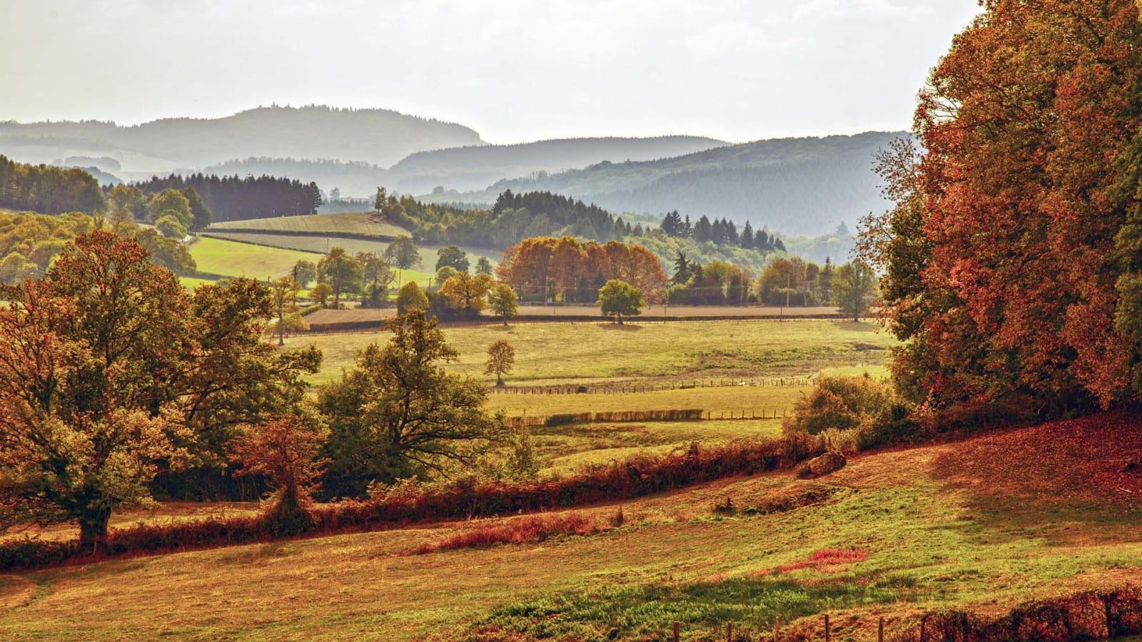 Paysage du Morvan à l'automne
