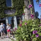 Visite à la boutique des Anis de Flavigny