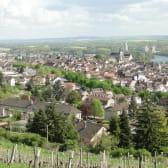 Vue sur Joigny depuis les vignes
