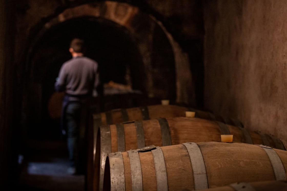 Visite de cave avec un vigneron